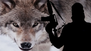 lone-wolf-terrorists1